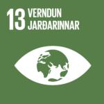 Verndun Jarðarinnar